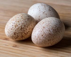 3 яйца индеек