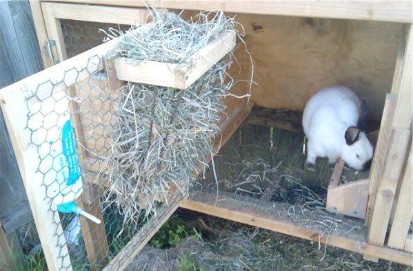 Кормушки для сена кроликам своими руками