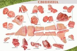 Разделка туши свинины схема