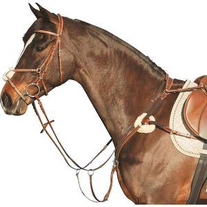 Как выглядит недоуздок для лошади