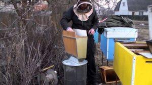 Термокамеры для пчел своими руками 11