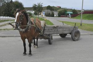 Деревянная телега для лошади