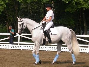 Бег лошади: особенности исполнения и виды аллюров