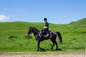 Кавказские скакуны