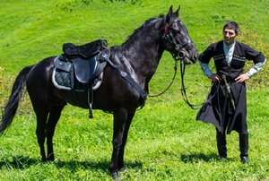 Кавказские лошади