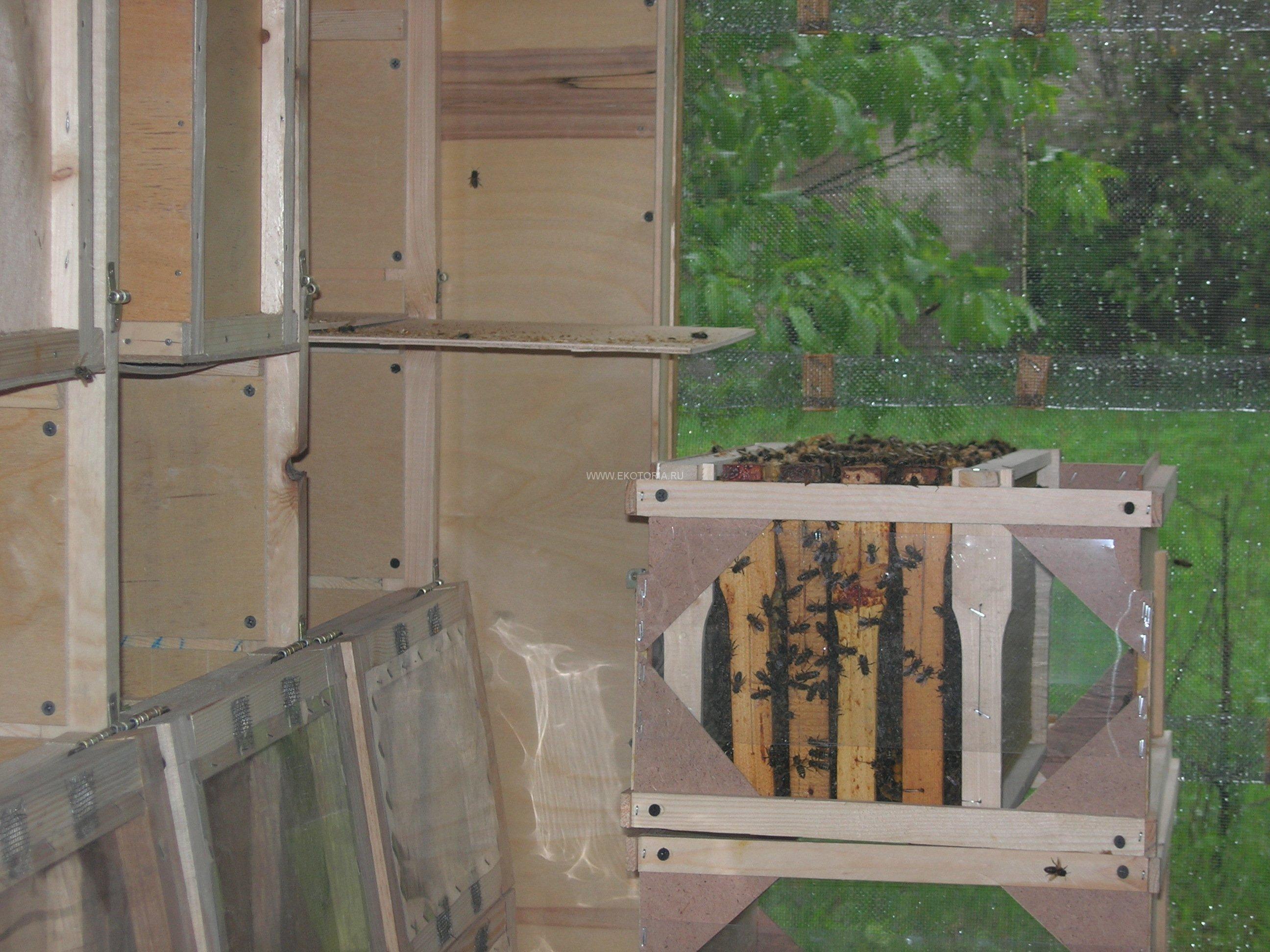 пчелопавильон берендей чертежи
