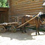 Как собственноручно запрягать коня в повозку и строить телегу для лошади