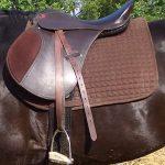 Седла для лошади: основные виды (конкурное