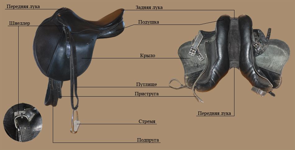 сожалению, амуниция для лошади название с картинками нужно