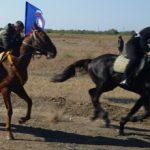 Скачки на лошадях. Виды скачек
