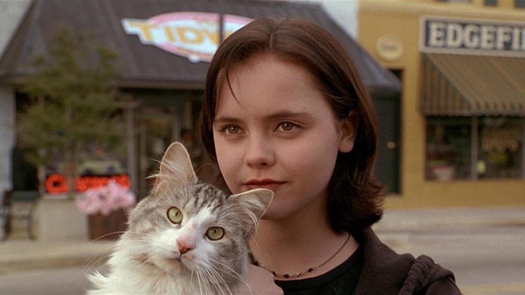 ТОП 5 лучших фильмов о котиках