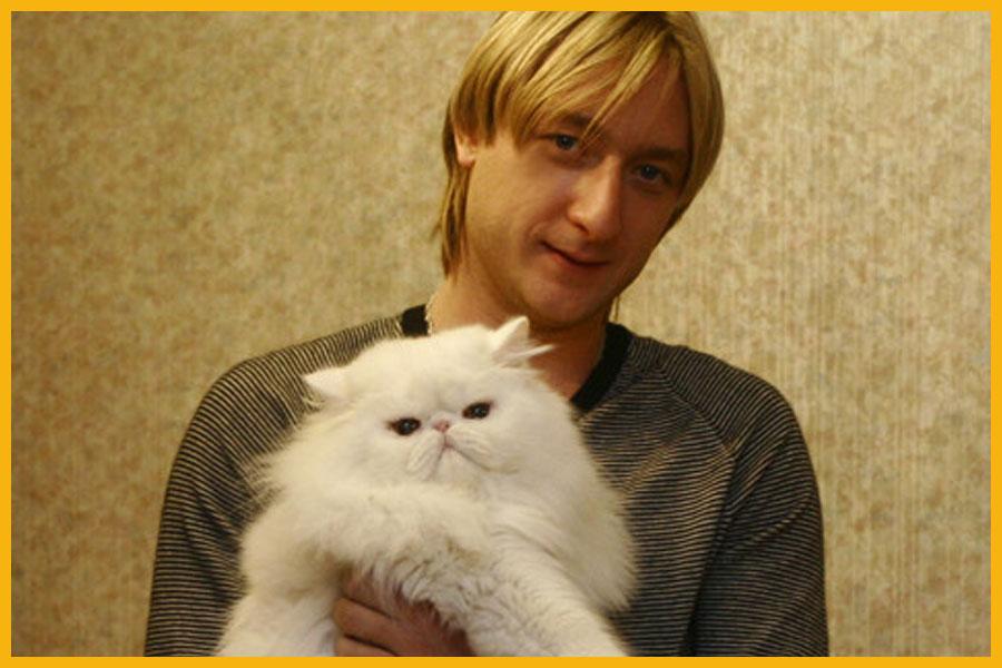 Знаменитые котейки известных людей