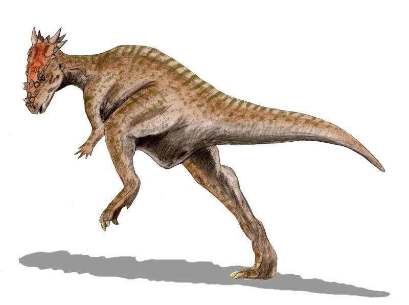 Пахицефалозавр - живой таран древности