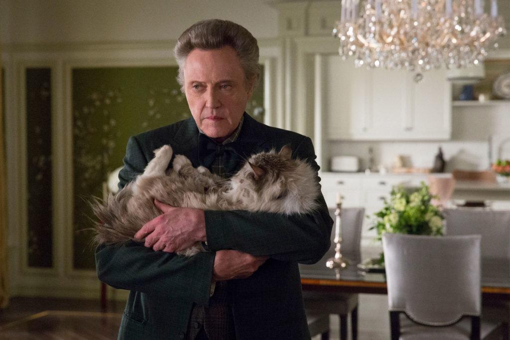 ТОП 5 лучших фильмов о кошках