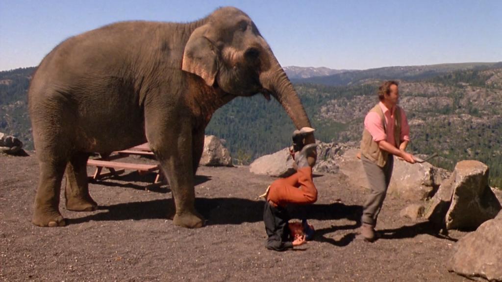 10 самых крутых фильмов про животных