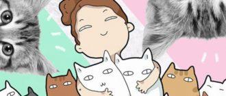 Любовь к кошкам: причины, особенности, характер, поведение