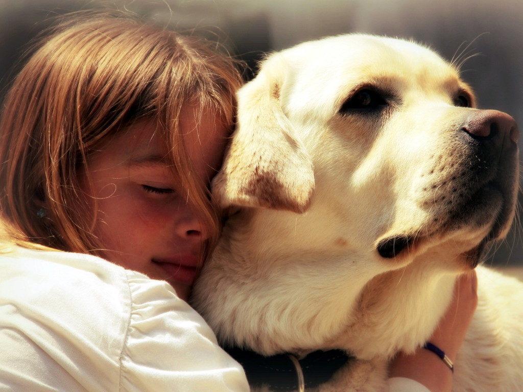 Топ 6 пород собак для детей