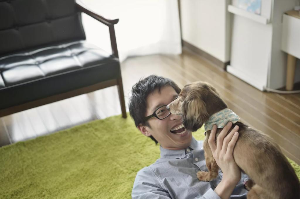 Как выбрать собаку, которая идеально подойдёт именно вам