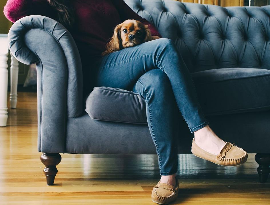 Топ 7 железобетонных правил, которые должен знать каждый щенок