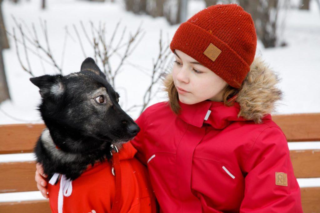 Топ 6 самых популярных собак в Москве