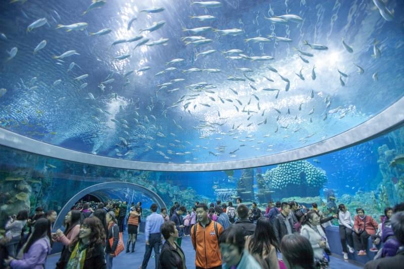 Самые большие в мире крытые аквариумы