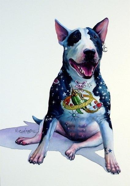 Зачем собаке нужно делать татуировку