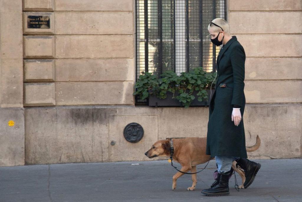 Как часто следует выгуливать свою собаку